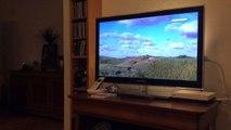 Babou regarde la TV