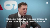 Elon Musk: I can fix South Australia power network in 100 days or it's free