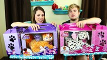 Fraidy Cats Board GAME Family Fun Night Game Challenge Cat & Dog Chase + Surprise Toys Dis