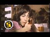 Femmes au bord de la crise de nerfs - bande annonce - VF - (1988)