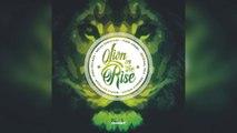 Selekta Faya Gong - Lion On The Rise Riddim mix promo 2017