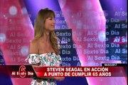 Steven Seagal: artes marciales y mucha acción