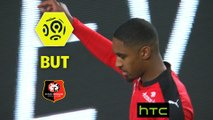 But Wesley SAID (58ème) / Stade Rennais FC - Dijon FCO - (1-1) - (SRFC-DFCO) / 2016-17