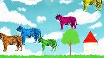 Животных Finger Семейные Песни | Тигр Мультфильм Детские Семья Палец Рифмы Для Детей | Животное |