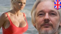 Pamela Anderson thinks Julian Assange is quite the thing