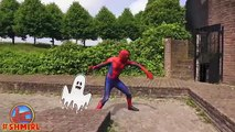 Spiderman vs Car! w/ Pink Spidergirl & Hulk - Spiderman vs Car Accident - Fun Superheroes