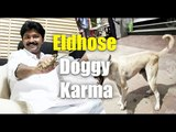 UDF MLA Eldhose Kunnappilly, who opposed killing of stray dogs, bitten by dogs in Delhi | Oneindia