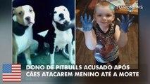 Dono de pitbulls enfrenta acusação de homicídio culposo após seus cães matarem um menino a caminho da escola.