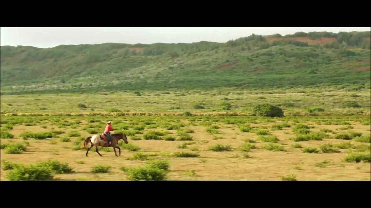Horse Riding – Icelandic Horses for  trjnr6t
