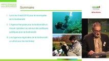 Loi pour la reconquête de la biodiversité, de la nature et des paysages : de nouvelles opportunité pour agir par Jean-Michel Zammite, directeur régional Île-de-France (intérim) de l'Agence française pour la biodiversité