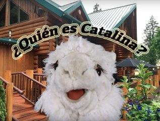 ¿Who is Catalina the Alpaca? Episodio 1/10