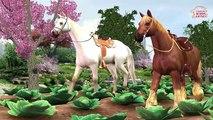 Arco iris Caballo Aprender los Colores || Aprender Sonidos de Animales y de los Dedos de la Familia de los Niños Rimas