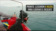 ¡Hacia la libertad! El rescate de un cachalote que quedó atrapado en redes de pesca en China