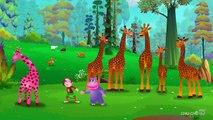 Animal Finger Family song-best Urdu-Hindi poems for kids- 3D Animation Nursery Rhymes & kids Songs-Nursery Rhymes for children-Songs for Children with Lyrics-best Hindi Urdu kids poems-Best kids English Hindi Urdu cartoons