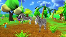 Learn Animals Names & Sounds for Children   Learn Wild Animals & Farm Animals,Sea Animals