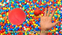Play Doh Finger Family Ball Pit Song for learning colors   Learn Animals with Playdough fo