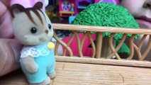 Calico Critters Kittens Ryan Plays With Liz & Bad Boy Reads Diary in a Tree House HMP Shorts Ep. 18-6UNwV