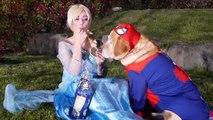 Spiderman & Spiderdog & Frozen Elsa Vs Joker & Fart Dog Food Prank - Fun Superhero In Real