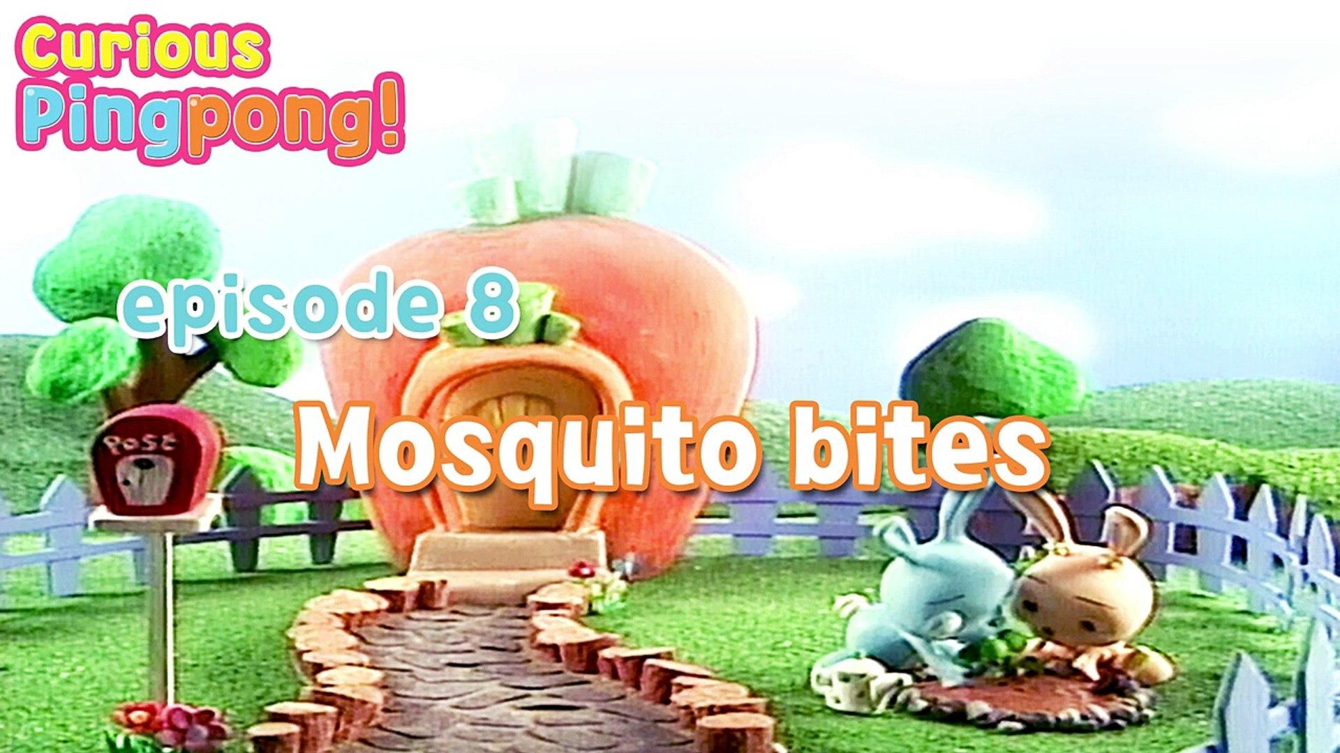 [Curious Ping Pong ] #17 Ubiquitous | Kids Animation Series | Education contents