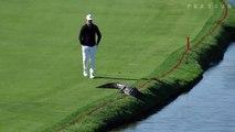 Quand un golfeur pousse un alligator qui s'invite sur le green d'un golf de Floride