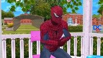 Fat Spiderman Finger Family Rhymes   Joker Prank Bees Ironman Doctor Frozen Elsa Vs Fat Sp
