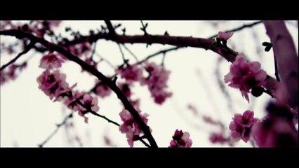 Pashto Urdu New Songs 2017 Thama - Ismail Khan Official Music Video