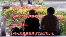 【海外の反応】中国人CAが見た日中の差「日本人に思わず嫉妬した」機内に7時間缶詰めにされた乗客がとった行動が話題に「中国は永遠に日本に追いつけない」