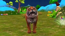 Finger Family Rhymes Tiger Cartoons | Ringa Ringa Roses Twinkle Twinkle Little S