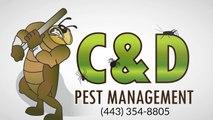 Pest Control Services Cape St Claire MD (443) 354-8805
