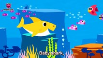 Baby Shark Dance With Kids Wearing Shark Costumes! | Animal