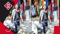 Kangana Makes A Comment Towards Hrithik,Alia-Sidharth To Be The New Aashiqui Jodi