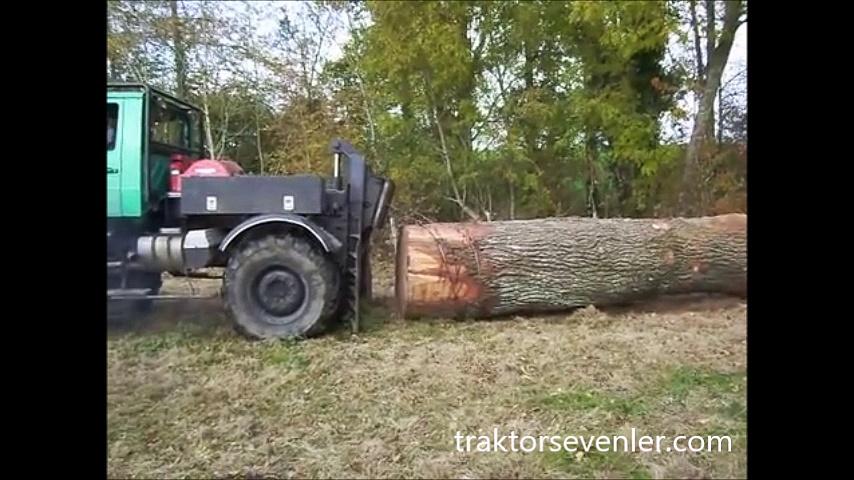 Mercedes ormancı