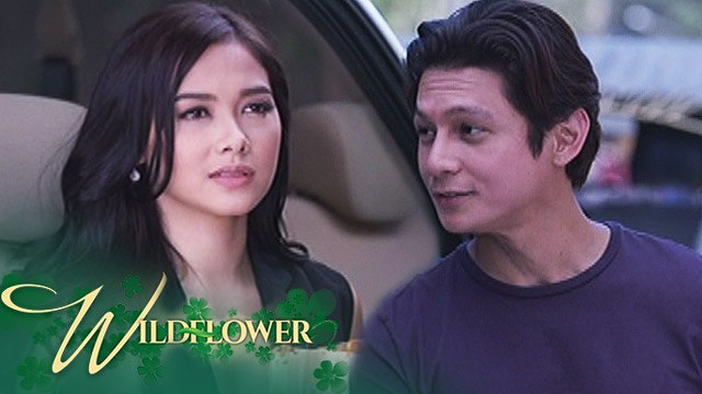 Wildflower: Diego talks to Ivy about Lily | Episode 26