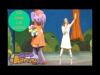 PARA DORMIR A UN ELEFANTE - Cantando con Adriana (en vivo)