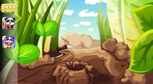 Ant Colonies - game for kids babybus panda HD Gameplay app android apk apps learning educa