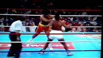 IRON Mike TYSON KNOCKOUTS & HIGHLIGHTS HD - Mosley Boxing