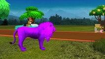 Colors Dinosaurs Elephant Vs Lion Finger Family | Animals Finger Family Nursery Rhymes Col