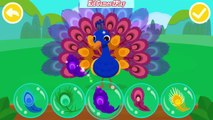 Baby Learn About The Habits Of Animals, How Animals Get Food - Baby Panda Play Fun Game