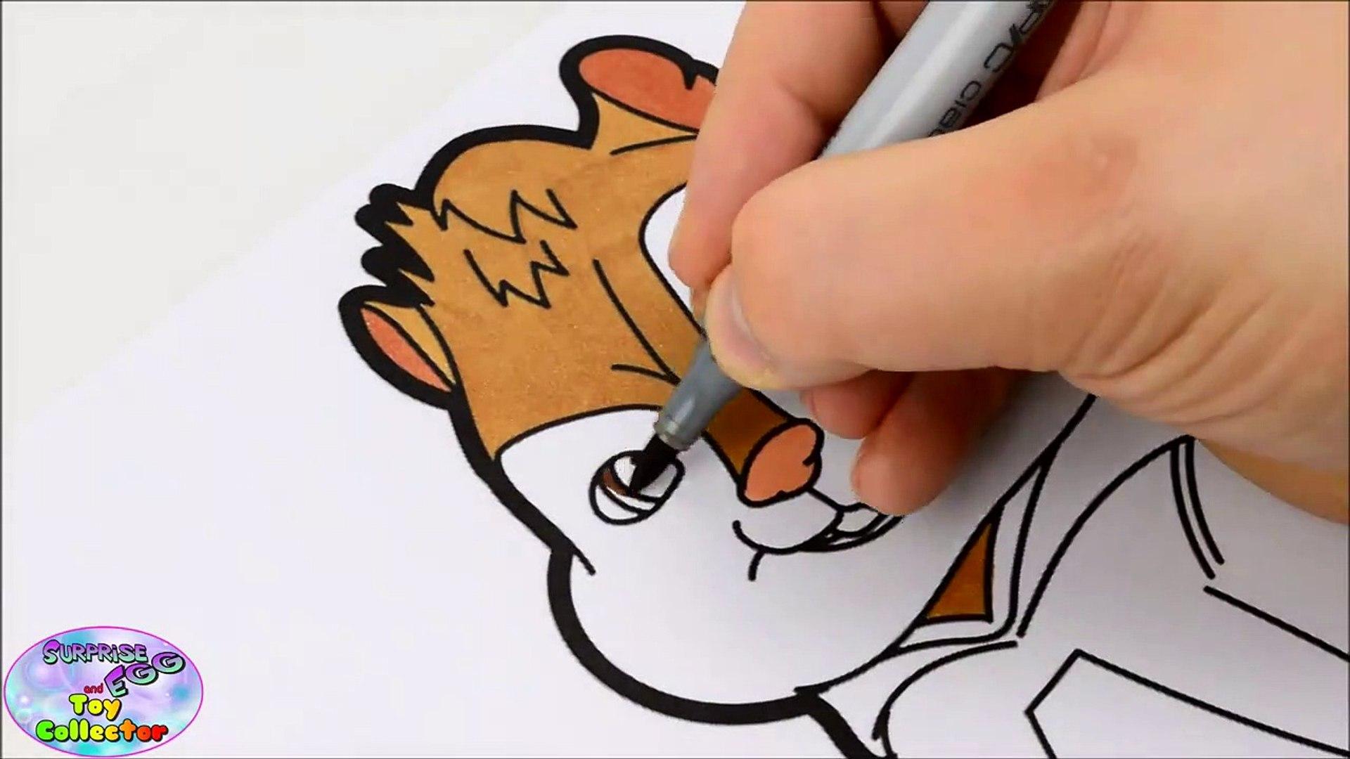 Draw pet color
