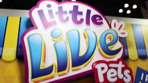 Little Live Pets TOY FAIR 2016 Tweet Talking Bird, Lil Frog, Turtle, Mouse, Snuggles Puppy-aPADY9