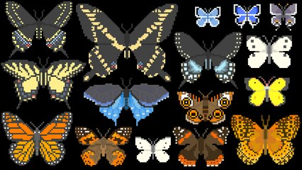 North American Butterflies - Insects - The Kids' Picture Show (Fun & Educational Learning Video)