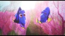 Finding Dory Movie CLIP - Baby Dory (2016) - Ellen DeGeneres, Ed O'Neill Movie HD(360p)