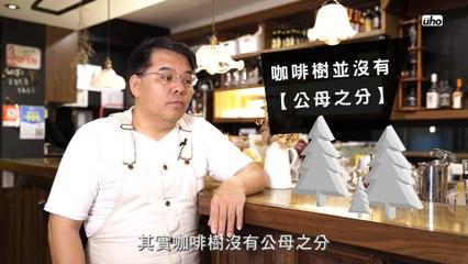 【葆哥咖學堂】第03集-咖啡豆有性別?什麼是公豆、母豆?