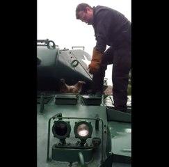 Ce pauvre raton laveur s'est coincé la tête dans un char d'assaut