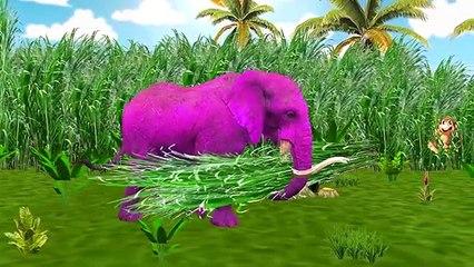 Животные седло цвета динозавры слон Семья палец лев питомник рифмы против |
