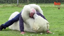 The Only Man In The World Who Can Swim With A Polar Bear: Grizzly Man http://BestDramaTv.Net