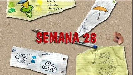 MÉTODO DOMAN: CÓMO ENSEÑAR A LEER A SU BEBÉ. HOW TO TEACH YOUR BABY TO READ. SEMANA 28. PRIMER AÑO.
