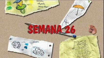 MÉTODO DOMAN: CÓMO ENSEÑAR A LEER A SU BEBÉ. HOW TO TEACH YOUR BABY TO READ. SEMANA 26. PRIMER AÑO.