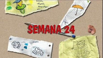 MÉTODO DOMAN: CÓMO ENSEÑAR A LEER A SU BEBÉ. HOW TO TEACH YOUR BABY TO READ. SEMANA 24. PRIMER AÑO.