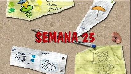 MÉTODO DOMAN: CÓMO ENSEÑAR A LEER A SU BEBÉ. HOW TO TEACH YOUR BABY TO READ. SEMANA 25. PRIMER AÑO.